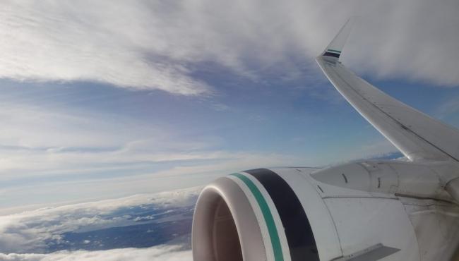 Wing of plane mid flight
