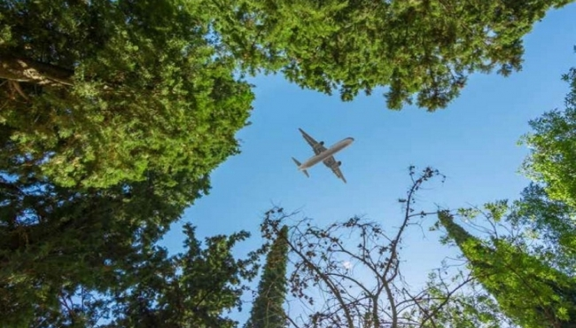 A photo of a commercial aircraft flying over some green trees in a forest.