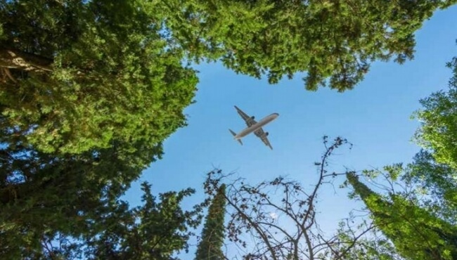 IBA's Aviation and the Environment Podcast, February 2020