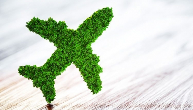 What Will Fuel Aviation's Green Future?